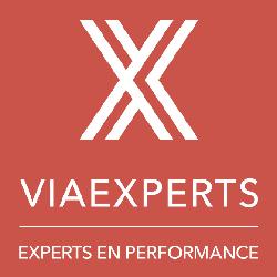 Logo du réseau de cabinets experts en performance ViaExperts